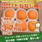 ≪送料無料≫ 奈良県西吉野産 農家直売 まったりたねなし柿 ご贈答用(2L〜3L) 3.7Kg (12個入り)
