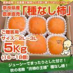 ≪送料無料≫ 奈良県西吉野産 農家直売 まったりたねなし柿 ご贈答用(2L?3L) 5Kg (16?18個入り)