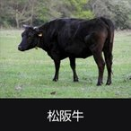 牛肉 松阪牛 A5 340kg まるごと一頭販売 キャンセル不可商品 送料無料