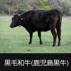牛肉 黒毛和牛A5 340kg まるごと一頭販売 キャンセル不可商品 送料無料