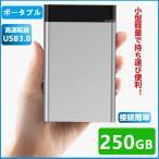 外付けHDD 250GB  ポータブル型 4k対応テレビ録画 PC パソコン mac対応 USB3.1/USB3.0用 HDD 2.5インチ 持ち運び 簡単接続 ハードディスク 最安値に挑戦