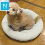 犬・猫用ペットベッド M(NクールT マル M GY) ニトリ 『送料有料・玄関先迄納品』