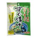 すぐ漬けの素 10g×4袋 粉末 (2)