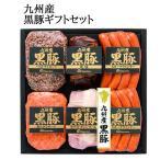 ハム ギフト 九州産 黒豚 ハムギフト 詰め合わせ セット セット(V5925-903A) (NO-50)