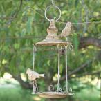 バードフィーダー 釣り下げ型 −Cタイプ− (野鳥の餌台 ハンキング ガーデン 小鳥 鳥 野鳥 バードウォッチング)