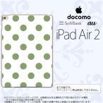 ショッピングair iPad Air 2 ケース カバー アイパッド エアー 2 ドット・水玉 白×緑 nk-ipadair2-108