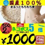 ポイント5倍 1000円ポッキリ まるっともち もち麦 (大麦) 国産 1kg (500g×2袋)  丸麦 まる麦 セール 送料無料 ネコポス