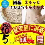 まるっともちもち麦 (大麦) 国産 1ケース (500g×10袋)   丸麦 まる麦 ダイエット 業務用