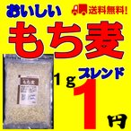 もち麦 国内産 国産 おいしいもち麦ブレンド 500g メール便 送料無料