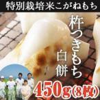 杵つきもち 白餅450g(8枚入) 新潟県産 お歳暮 送料無料 ギフト 贈り物 贈答品 内祝い のし無料 こがねもち お餅モチ 切り餅 特別栽培