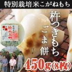 杵つきもち ごま餅450g(8枚入) 新潟県産 お歳暮 送料無料 ギフト 贈り物 贈答品 内祝い のし無料 こがねもち お餅モチ 切り餅 特別栽培