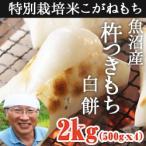 魚沼産杵 つきもち 白餅 2kg(500gx4)新潟県産 お歳暮 送料無料 ギフト 贈り物 贈答品 内祝い のし無料 こがねもち お餅モチ 切り餅 特別栽培