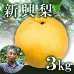 新興梨3kg箱(生産者・片山)