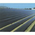 農業用マルチシート 国産黒マルチ  厚さ0.02mm×長さ200m×幅135cm  3本セット
