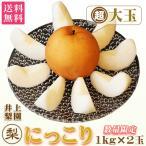 梨 にっこり 超大玉(1kg)×2玉 約2kg 送料無料 なし 栃木産 ふるさと 産直 和梨 お歳暮 高級 フルーツ ギフト プレゼント 贈答品