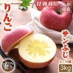 りんご 蜜入り サンふじ 8〜10玉 約3kg お歳暮 送料無料 特別栽培 ふじ リンゴ アップル 山形産 ふるさと 産直 果物 くだもの 高級 フルーツ ギフト 贈答用
