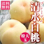 お中元 御中元 ギフト 桃 清水白桃 プレミアム 特大玉 約1.6kg(約400g×4個) 送料無料 岡山産 特秀 白桃 もも ピーチ 果物 くだもの フルーツ プレゼント