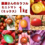 カラフルミニトマト(ミックス)1kg 熊本県産 送料別 /  嘉島町 藤瀬さんのトマト
