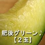 (予約販売) 肥後グリーン(メロン) 2玉 送料別/ 熊本県産 鏡町 松本くんのメロン