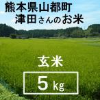 玄米 5kg (有機JAS) 令和2年産 ヒノヒカリ 熊本県産 送料別/ 山都町 津田さんのお米