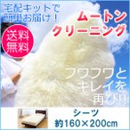 当店は日本で数少ないムートン専門店です。 加工や製品づくりはもちろん、クリーニング業務でも業界第一線...