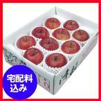 お歳暮 果物 早割 りんご 青森県産 蜜入りサンふじ 蜜秀3kg 通販 1010-518