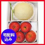お歳暮 果物 早割 国産マスクメロン1玉・信州サンふじりんご4玉 通販 1011-573