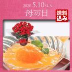 母の日 プレゼント ギフト 早割 母の日ギフト 2020 送料無料 花 花鉢 スイーツ 赤カーネーション 鉢植えとまるごとみかんゼリーのセット