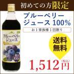 ブルーベリージュース100% 720ml 初回限定 送料無料 ブルーベリー ジュース フルーツジュース