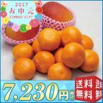 【送料無料 お中元 フルーツ】ハウスみかん&マンゴー【M14-4】(646)