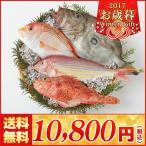 【お歳暮 海鮮 送料無料】福岡市場直送 玄海灘鮮魚詰合せ【M42-2/513】