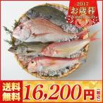 【お歳暮 海鮮 送料無料】福岡市場直送 玄海灘鮮魚詰合せ【M42-8/512】