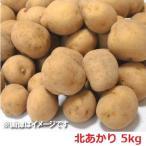 訳あり じゃがいも 北海道 きたあかり 北湯沢産(北海道 伊達 市) じゃがいも 北あかり 5kg(サイズ 不揃い M〜2L) 価格1698円 じゃが芋 キタアカリ 送料無料