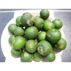 有機へべす(露地物B品)2kg、JASオーガニック認定、完全無農薬【配送方法冷蔵】