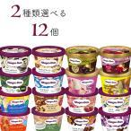 ハーゲンダッツ アイスクリーム ミニカップ 17種類から2種類選べる12個(6個×2種類)セット