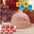 福岡 あまおう 苺 ソルベ(アイスクリーム) ギフト セット 12個