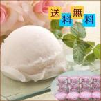 岡山 清水 白桃 ソルベ ギフト セット 16個