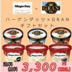 お歳暮 ハーゲンダッツミニカップ×明治グラン(GRAN)12個(6種類×2個) ギフトセット