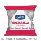 ラッテリーア ソッレンティーナ 冷凍 牛乳モッツァレッラ ホール 250g(125g×2個) 16袋セット 2034 送料無料  代引き不可 送料無料 メーカー直送 期日