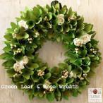 nonfloral_wreath-sai-15grleafwb
