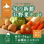 北海道産 野菜セット 旬の新鮮お野菜詰め合わせ 7品種以上 80サイズ 調理しやすい常備野菜がメインのつめあわせ