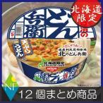 北海道限定 日清 北のどん兵衛 天ぷらうどん(95g) ×12個