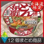 北海道限定 日清 北のどん兵衛 天ぷらそば(100g) ×12個
