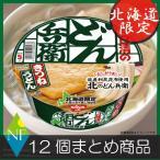 北海道限定 日清 北のどん兵衛 きつねうどん(94g) ×12個