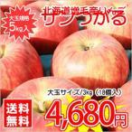【送料無料】日本最北果樹生産地★北海道増毛産りんご「サンつがる」 中玉規格・約5kg(18玉)入 ※お届け日の指定はできません!