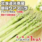 蘆筍 - 《北海道名寄産》 リリーファーム産★朝採りグリーンアスパラ / L〜2Lサイズ / 1.0kg入