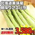 蘆筍 - 【送料無料】北海道美瑛産【露地限定】朝採りグリーンアスパラ【M〜2L混合】1.0kg入 ※商品のお届けは収穫後5月下旬から6月下旬を予定しています。
