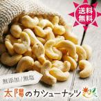 【送料無料】太陽のカシューナッツ 生カシューナッツ ベトナム産 ナッツ 無塩 無油 cashew nuts 無塩ナッツ