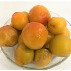 国産冷凍南高梅または、古城梅(和歌山産)冷凍梅  500g 【消費税込み】和歌山産 完熟梅の美味を凍らせました。