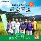 新米 令和3年 30kg 新潟 コシヒカリ 玄米 農家直送  糸魚川 能生米 送料無料 精米サービス 白米 小分け 米 お米